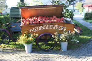 natuurvoedingswinkel Thedinghsweert